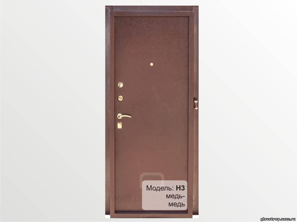 металлическая дверь для дачи в коломне