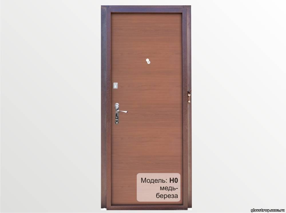 двери тамбурные металлические со стеклом дешево